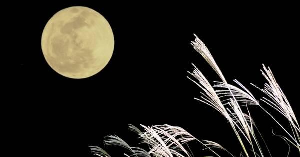 中秋の名月の夜の過ごし方