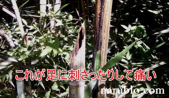 竹を斜めに切ると足に刺さったりして危険です
