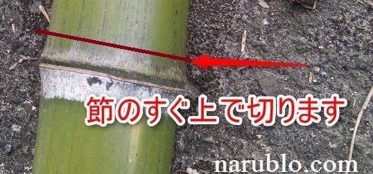 竹は節のすぐ上で切ります