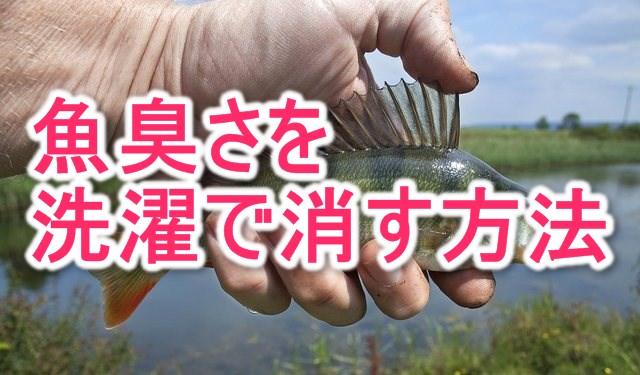 服の魚のにおいを洗濯で消す方法